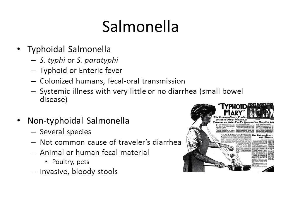 Salmonella Typhoidal Salmonella Non-typhoidal Salmonella