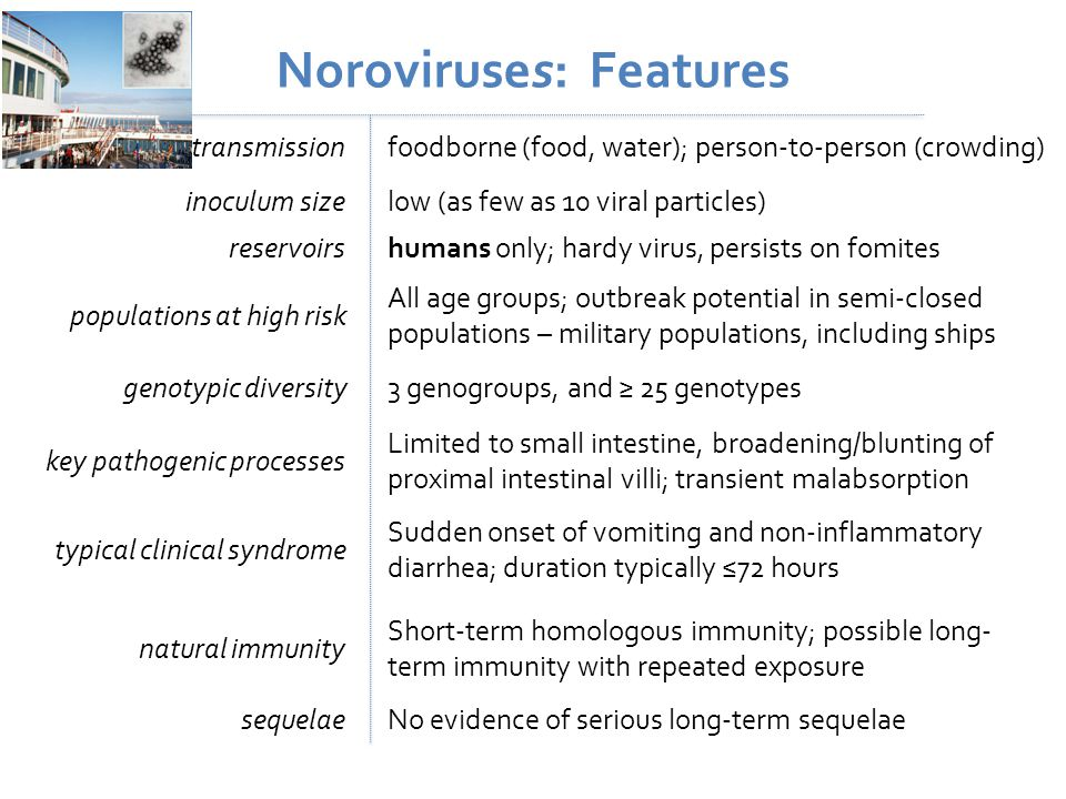 Noroviruses: Features