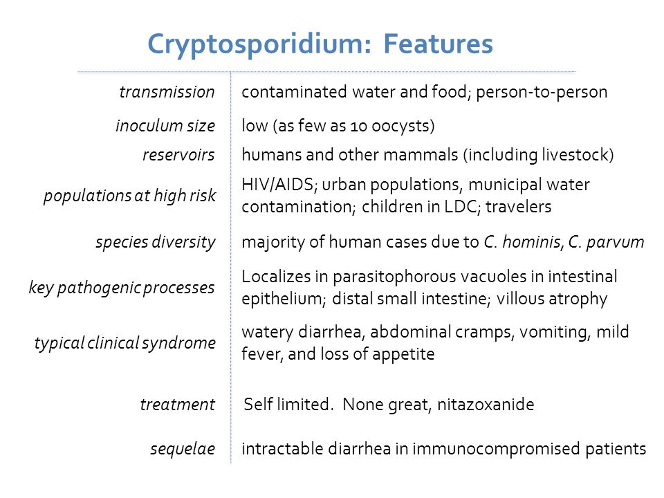 Cryptosporidium: Features