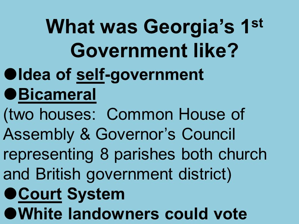 What was Georgia's 1st Government like