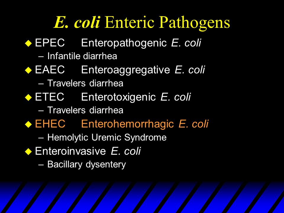 E. coli Enteric Pathogens