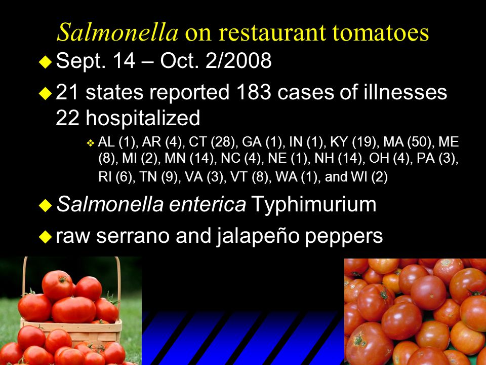 Salmonella on restaurant tomatoes