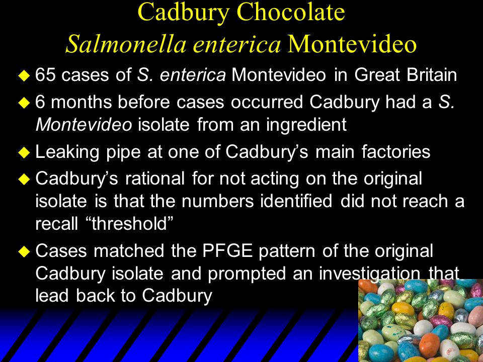 Cadbury Chocolate Salmonella enterica Montevideo