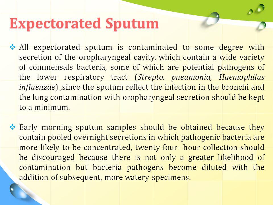 Expectorated Sputum