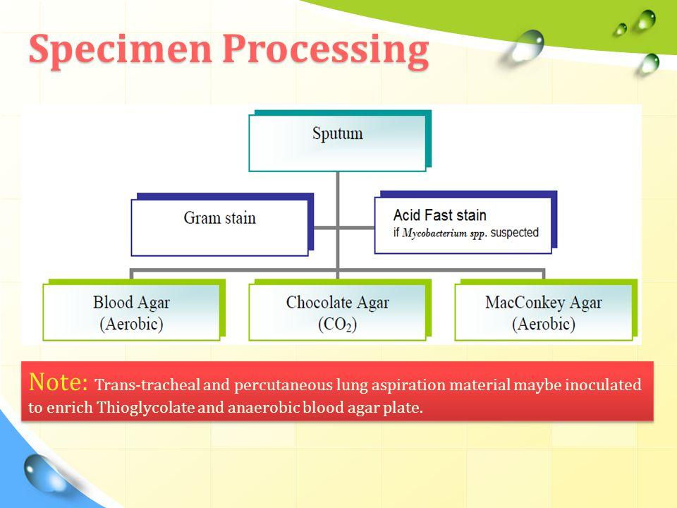 Specimen Processing