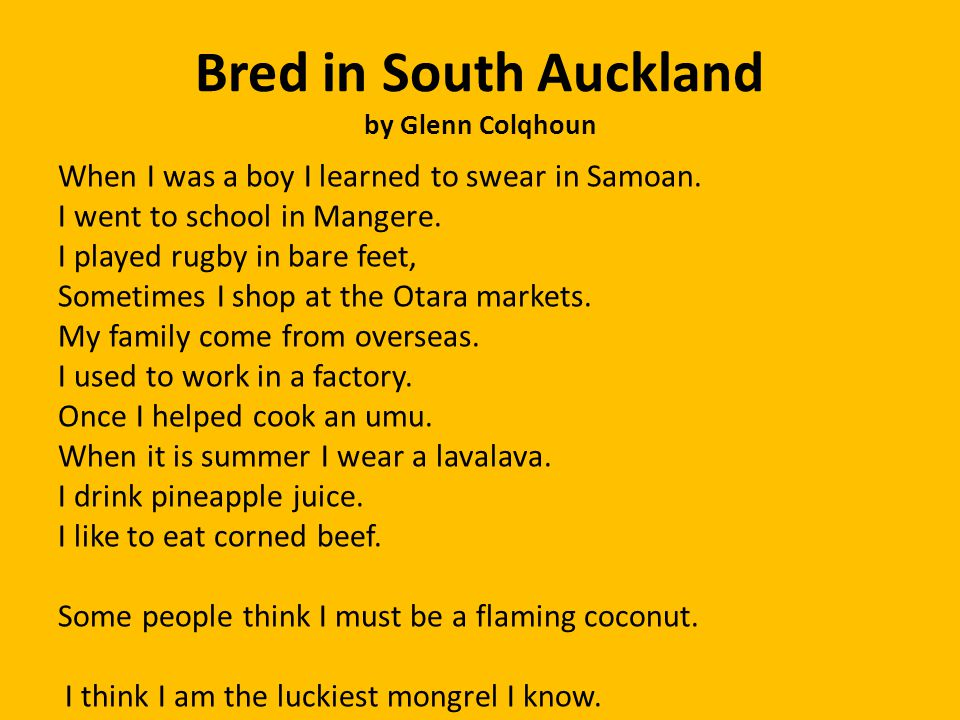 Bred in South Auckland by Glenn Colqhoun