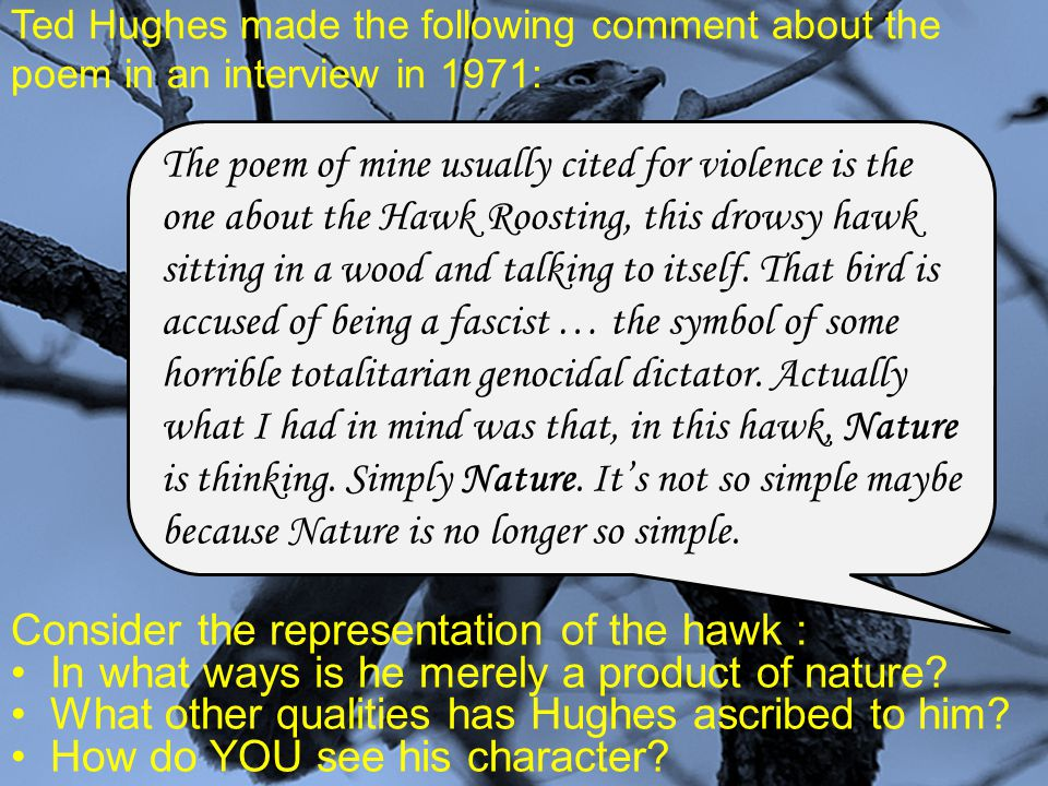 Consider the representation of the hawk :