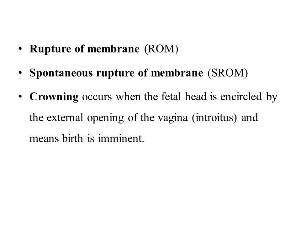 Rupture of membrane (ROM)