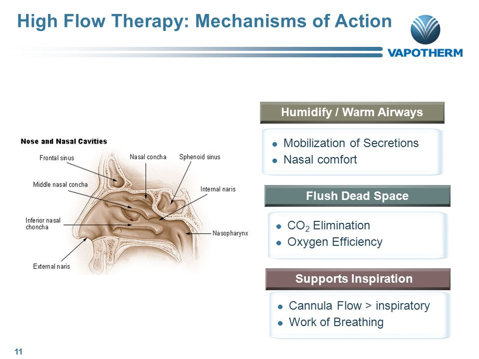 High Flow Therapy: Mechanisms of Action