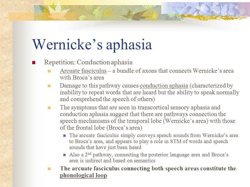 Wernicke's aphasia Repetition: Conduction aphasia