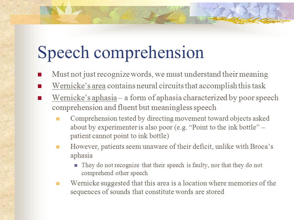 Speech comprehension Must not just recognize words, we must understand their meaning.