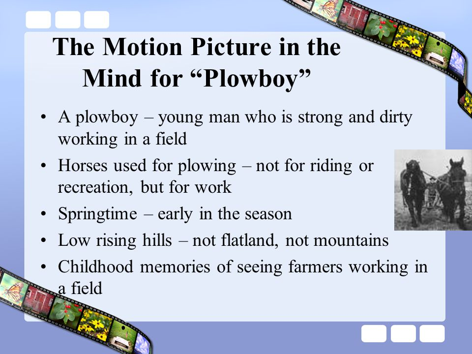 The Motion Picture in the Mind for Plowboy