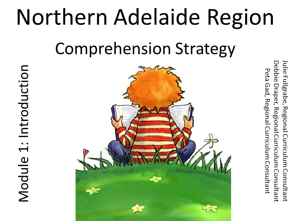 Northern Adelaide Region Comprehension Strategy