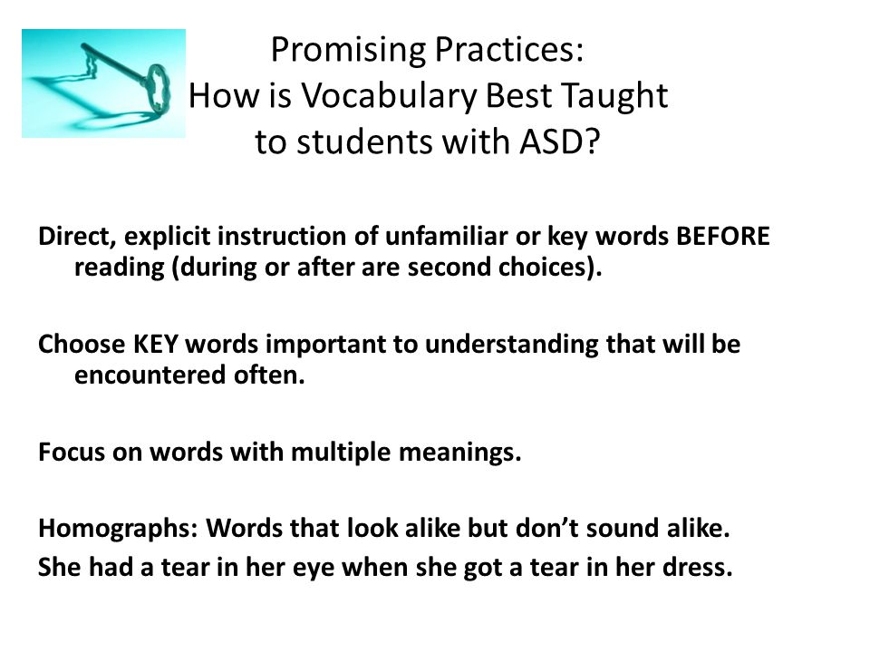 Promising Practices: How is Vocabulary Best Taught to students with ASD