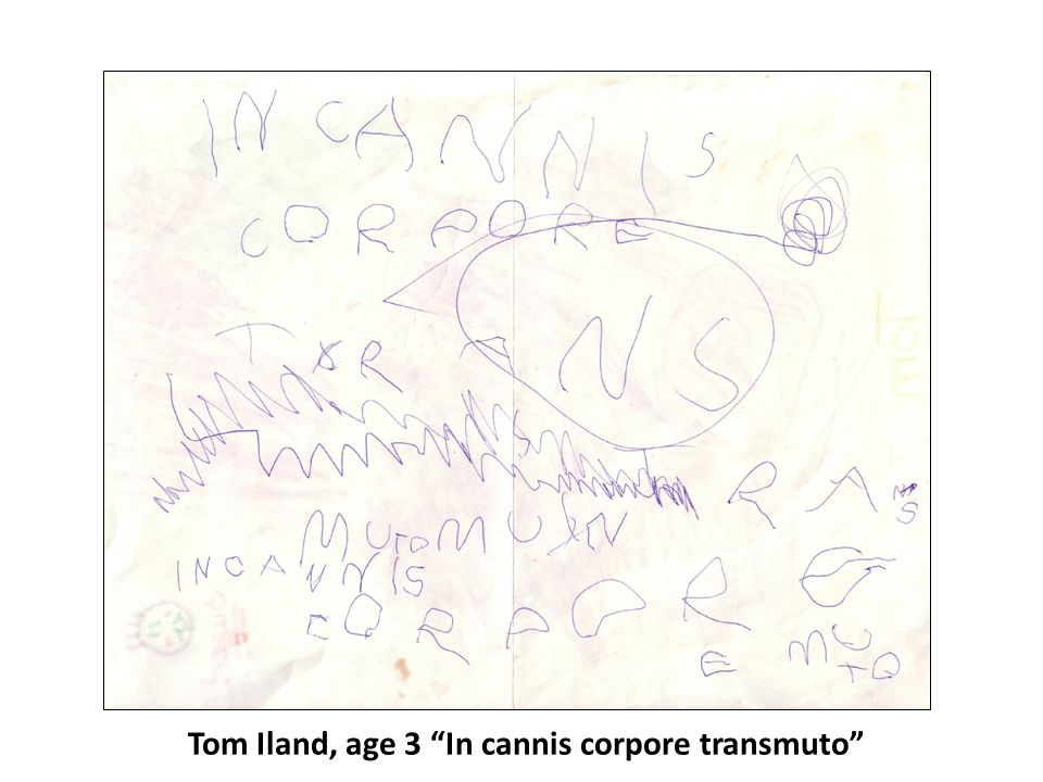 Tom Iland, age 3 In cannis corpore transmuto