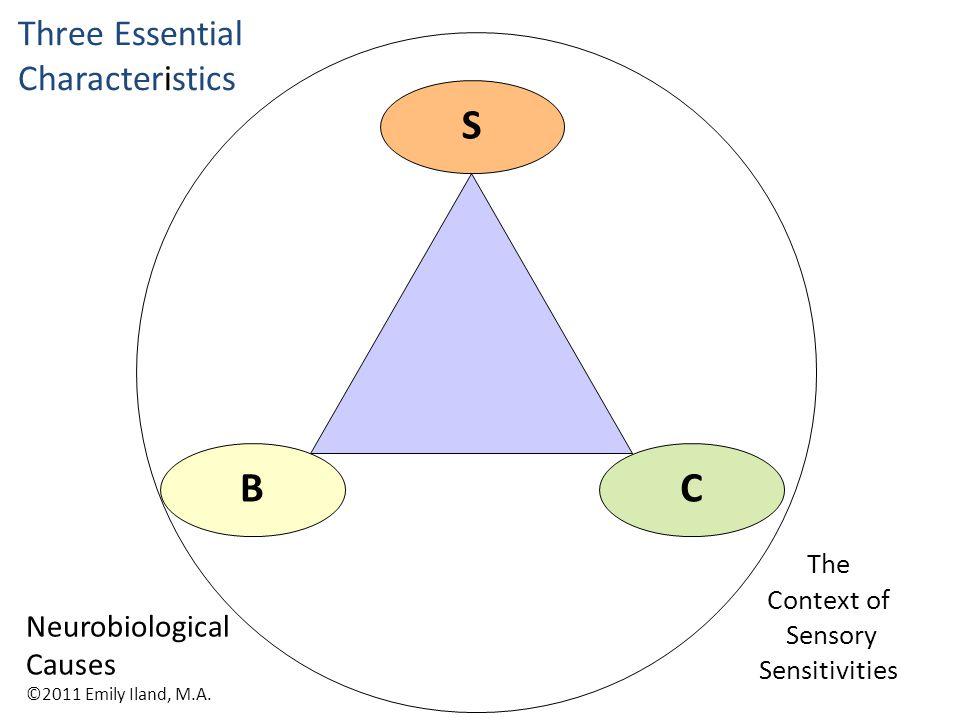 The Context of Sensory Sensitivities