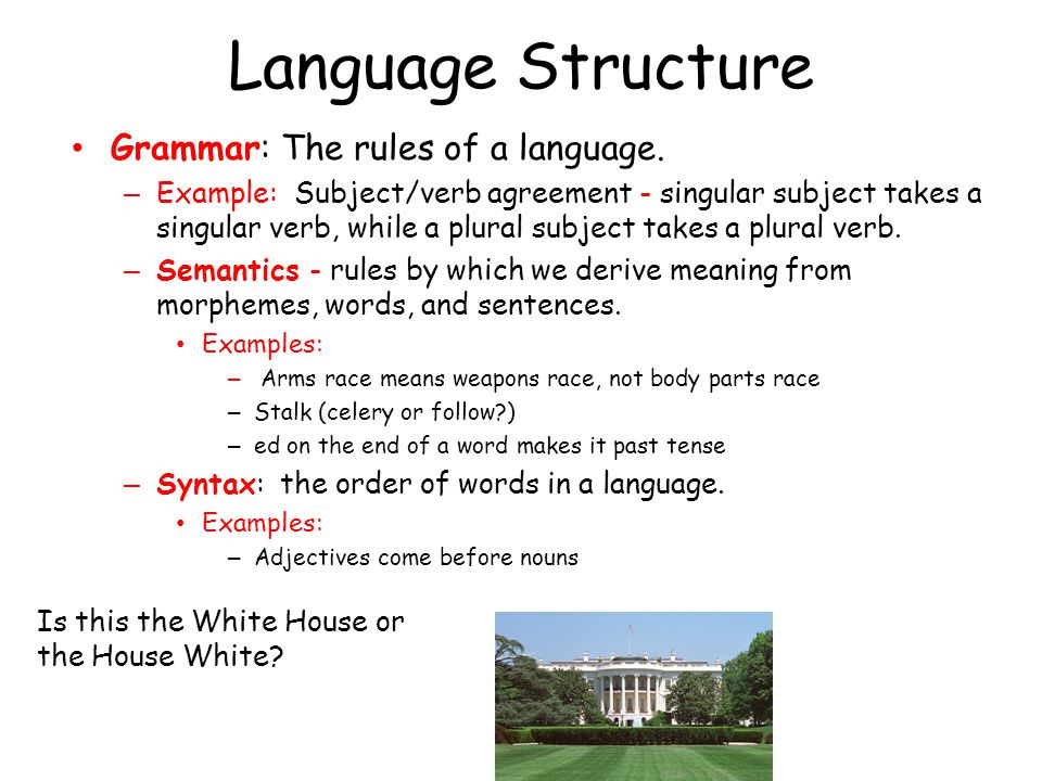 Language Structure Grammar: The rules of a language.