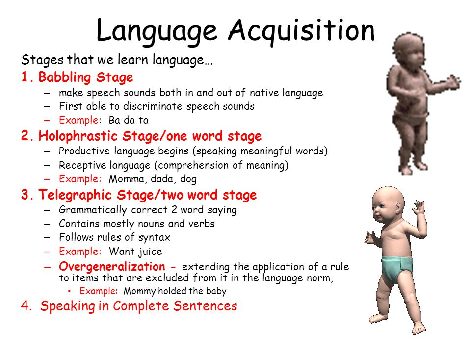 Language Acquisition Stages that we learn language… Babbling Stage
