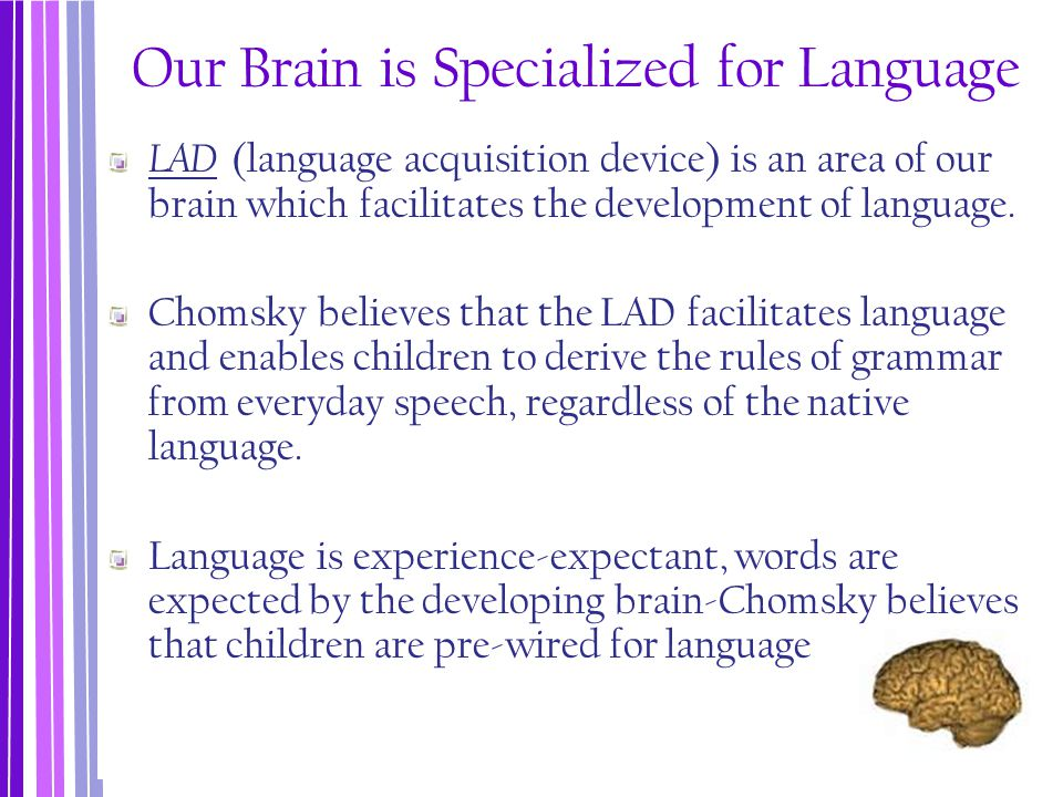 Our Brain is Specialized for Language