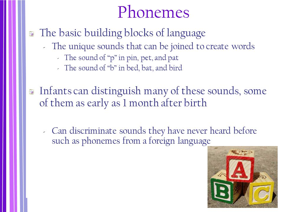 Phonemes The basic building blocks of language