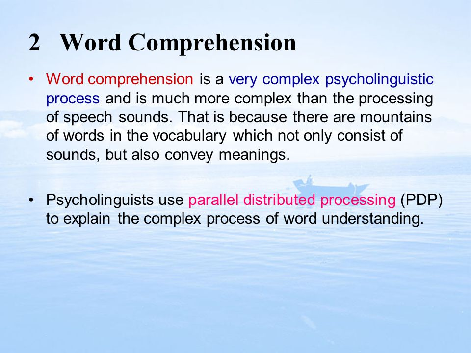 2 Word Comprehension