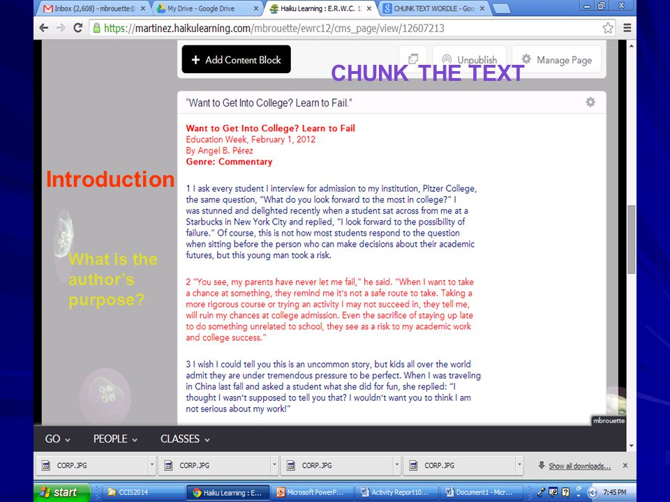 CHUNK THE TEXT Introduction What is the author's purpose