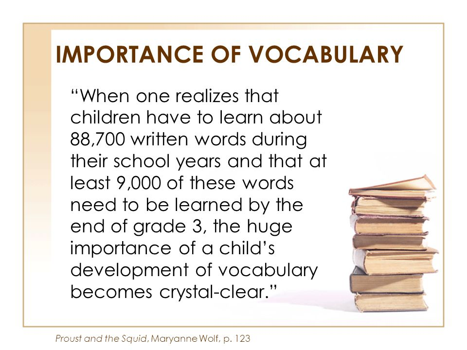 IMPORTANCE OF VOCABULARY