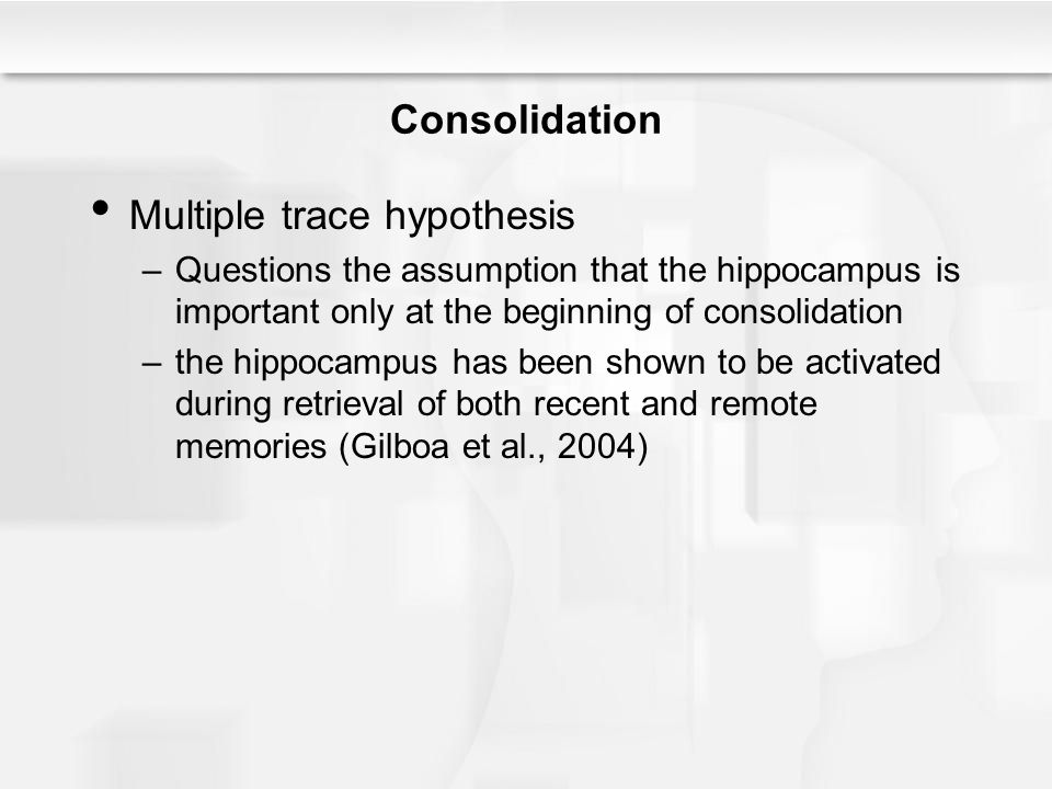 Multiple trace hypothesis