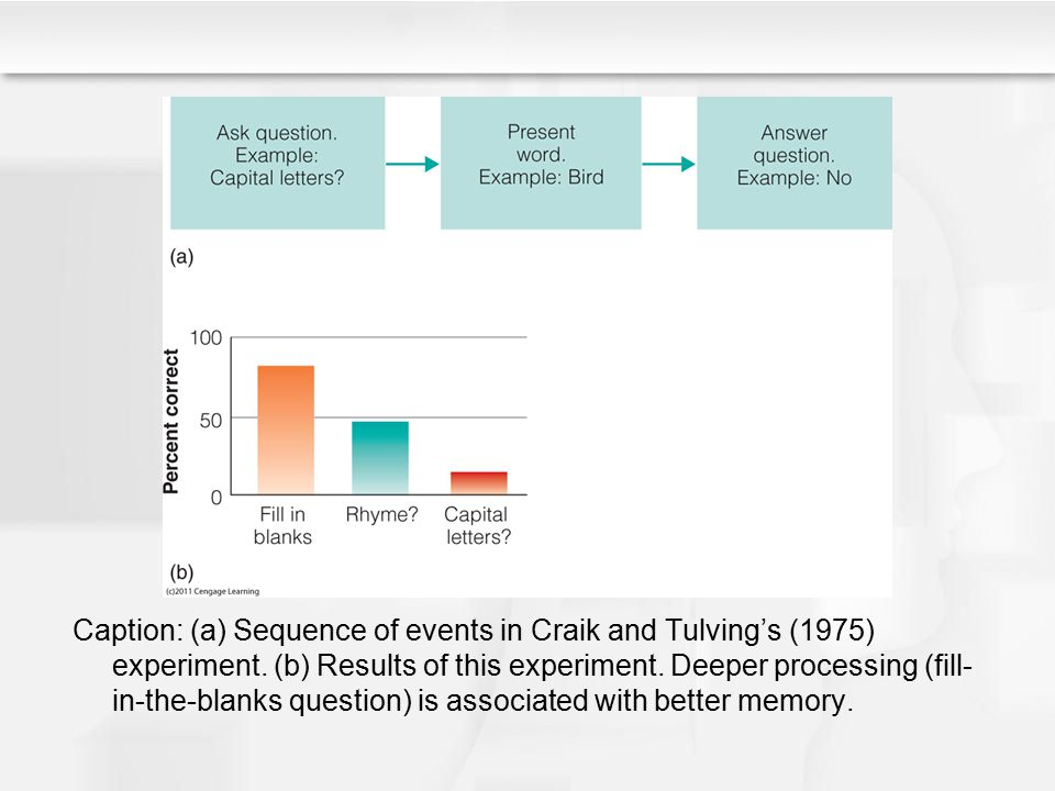 Caption: (a) Sequence of events in Craik and Tulving's (1975) experiment.