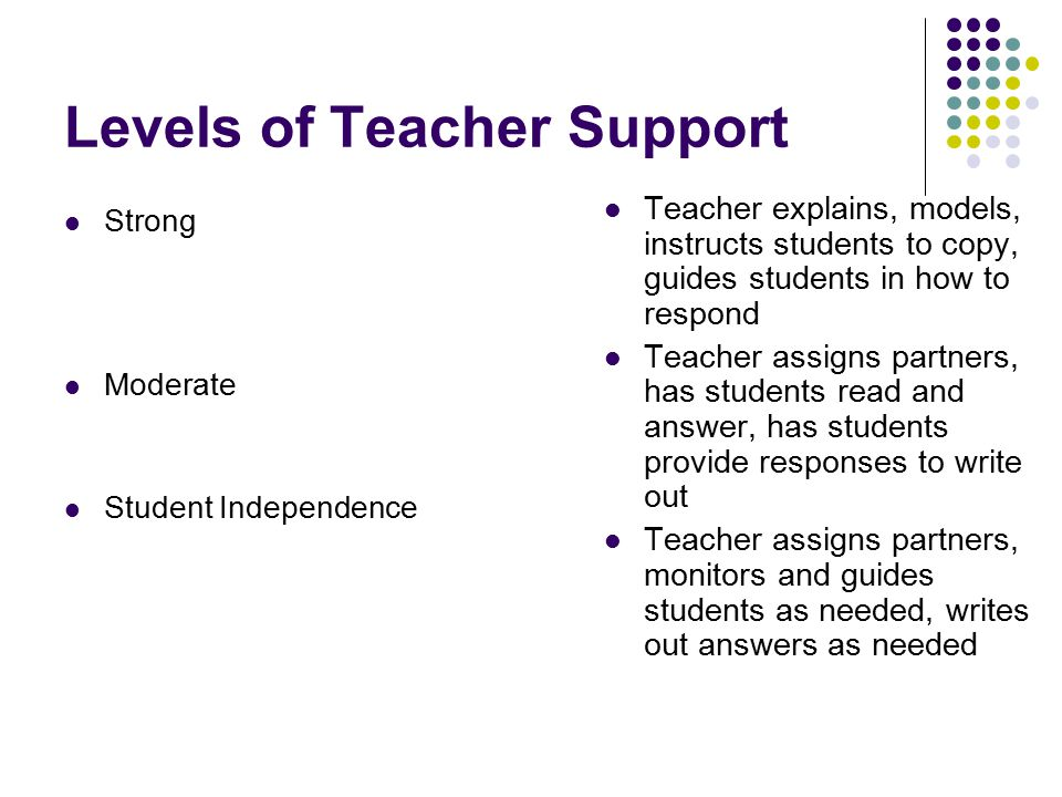 Levels of Teacher Support