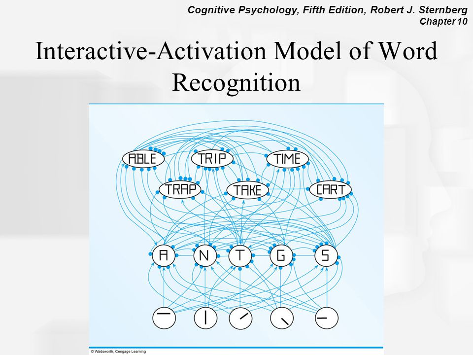 Interactive-Activation Model of Word Recognition