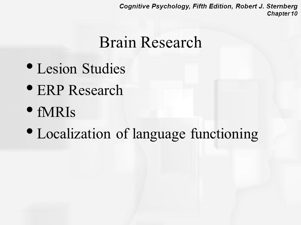 Brain Research Lesion Studies ERP Research fMRIs