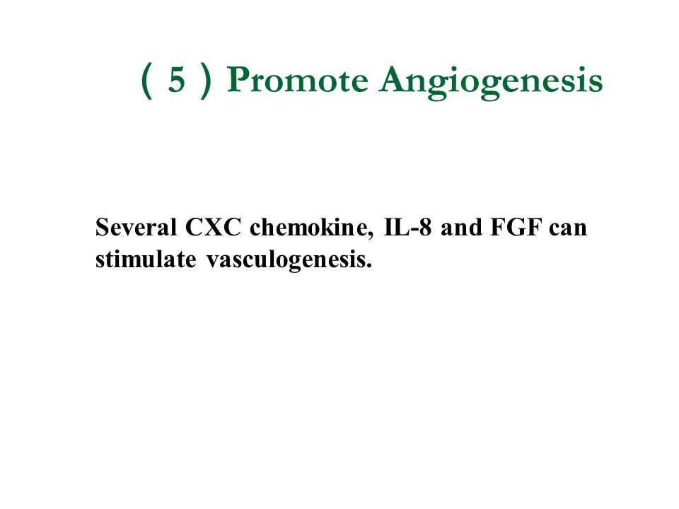(5)Promote Angiogenesis