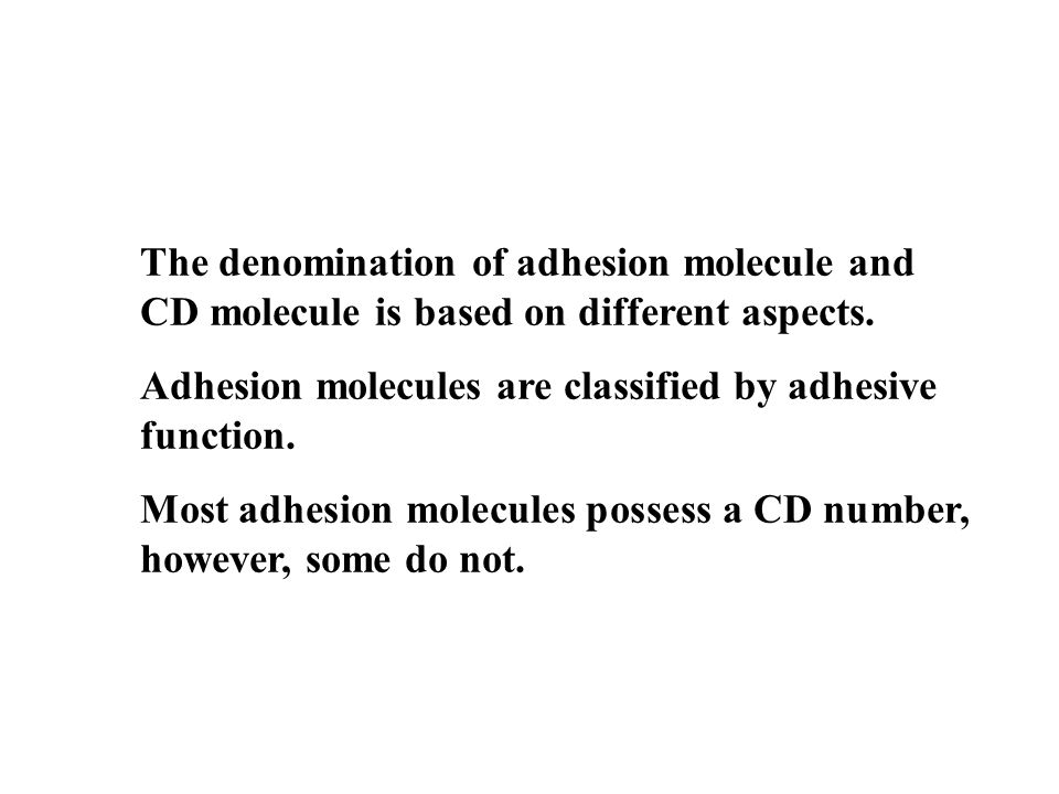 The denomination of adhesion molecule and CD molecule is based on different aspects.