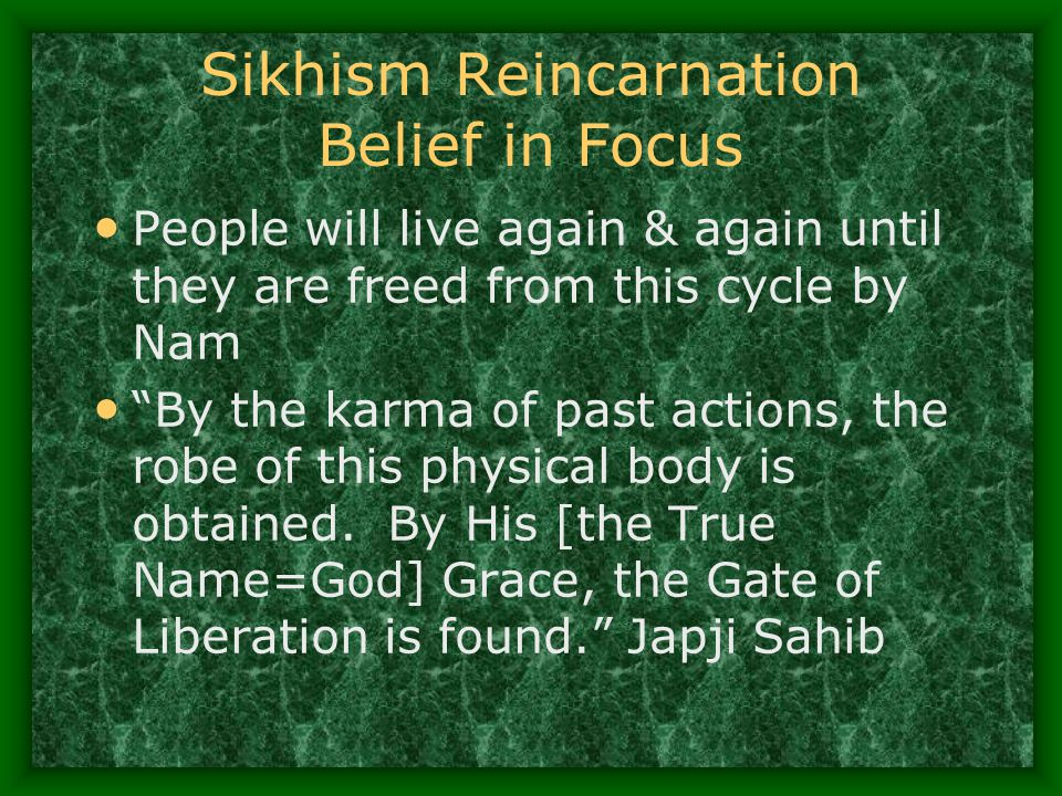 Sikhism Reincarnation Belief in Focus