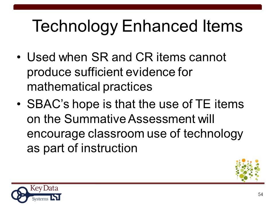 Technology Enhanced Items