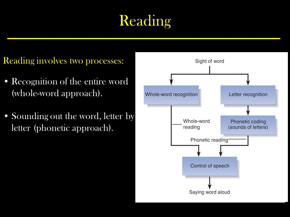 Reading Reading involves two processes: