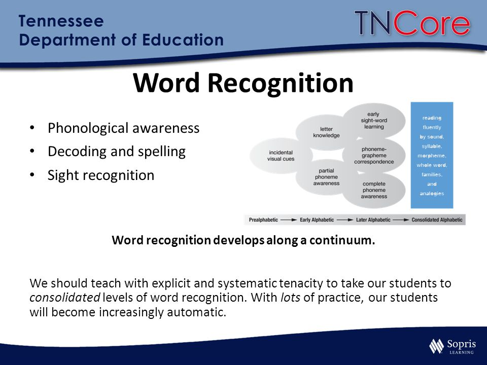 Word recognition develops along a continuum.
