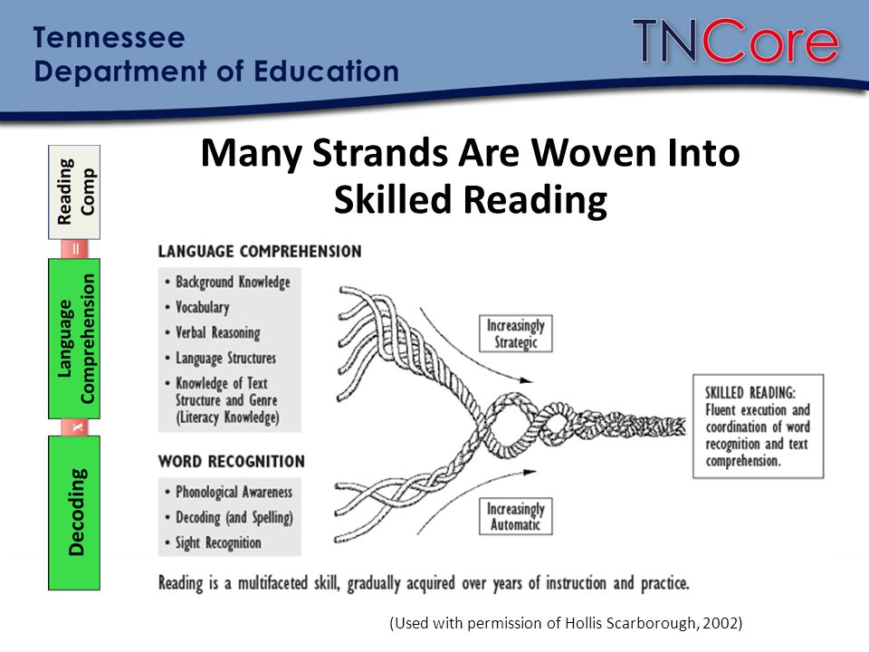 Many Strands Are Woven Into Skilled Reading
