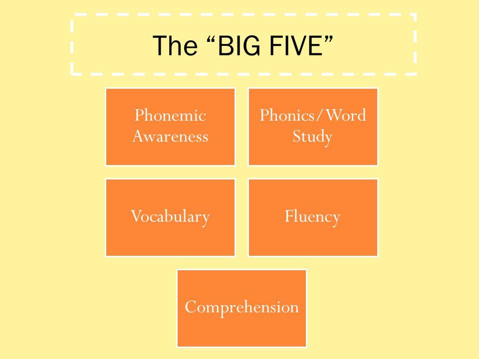 The BIG FIVE Phonemic Awareness Phonics/Word Study Vocabulary