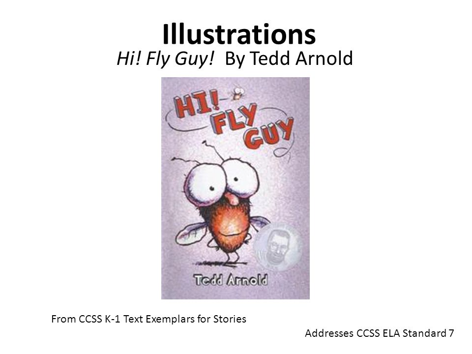 Hi! Fly Guy! By Tedd Arnold