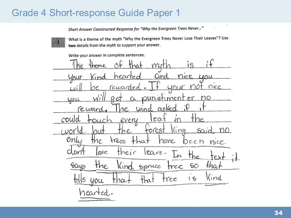 Grade 4 Short-response Guide Paper 1