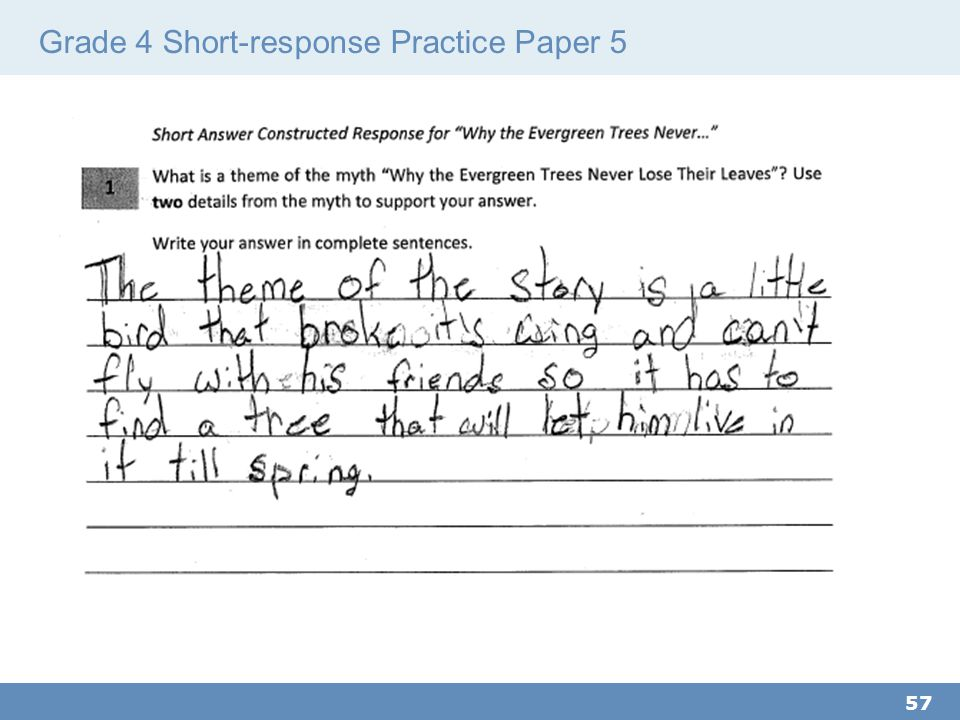 Grade 4 Short-response Practice Paper 5