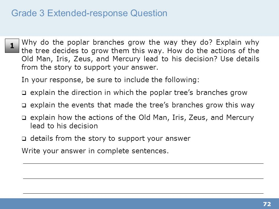 Grade 3 Extended-response Question