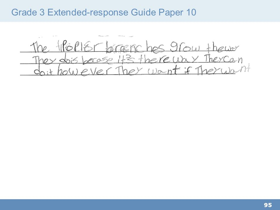 Grade 3 Extended-response Guide Paper 10