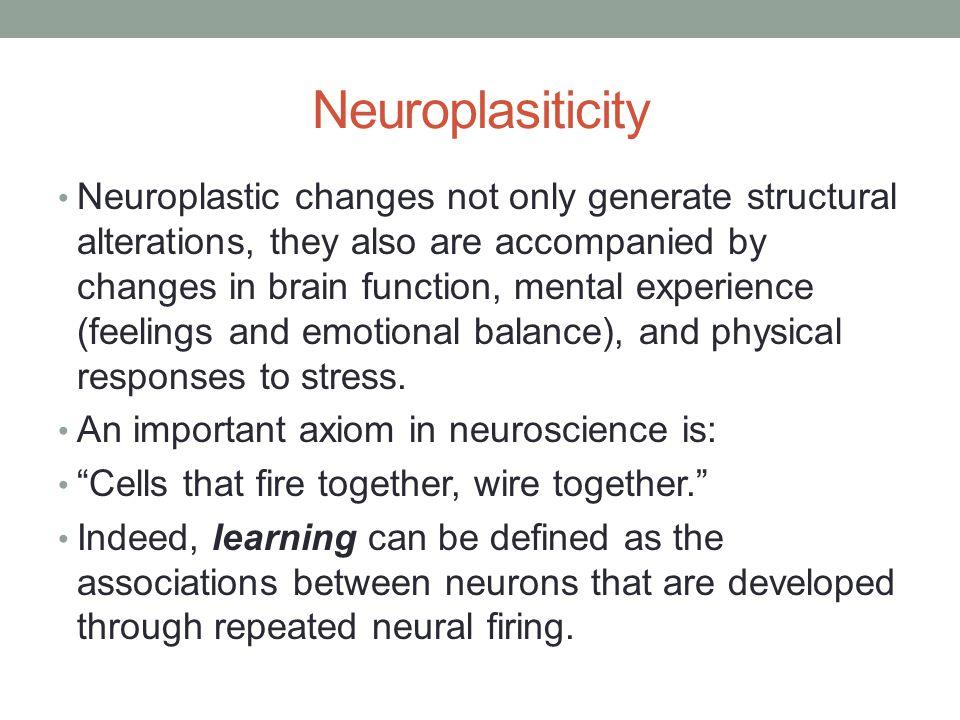 Neuroplasiticity