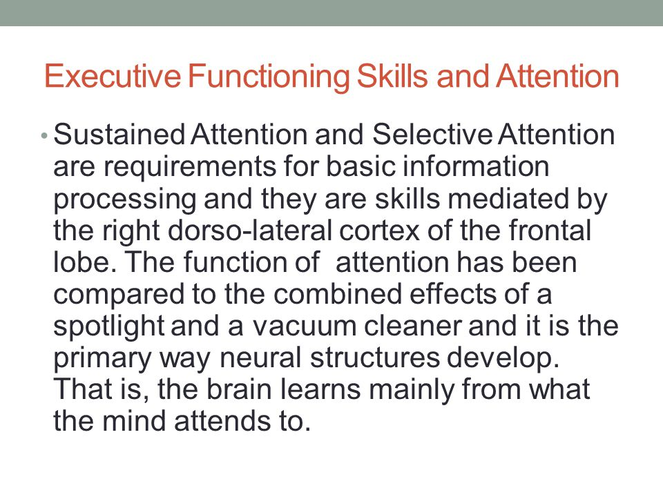 Executive Functioning Skills and Attention