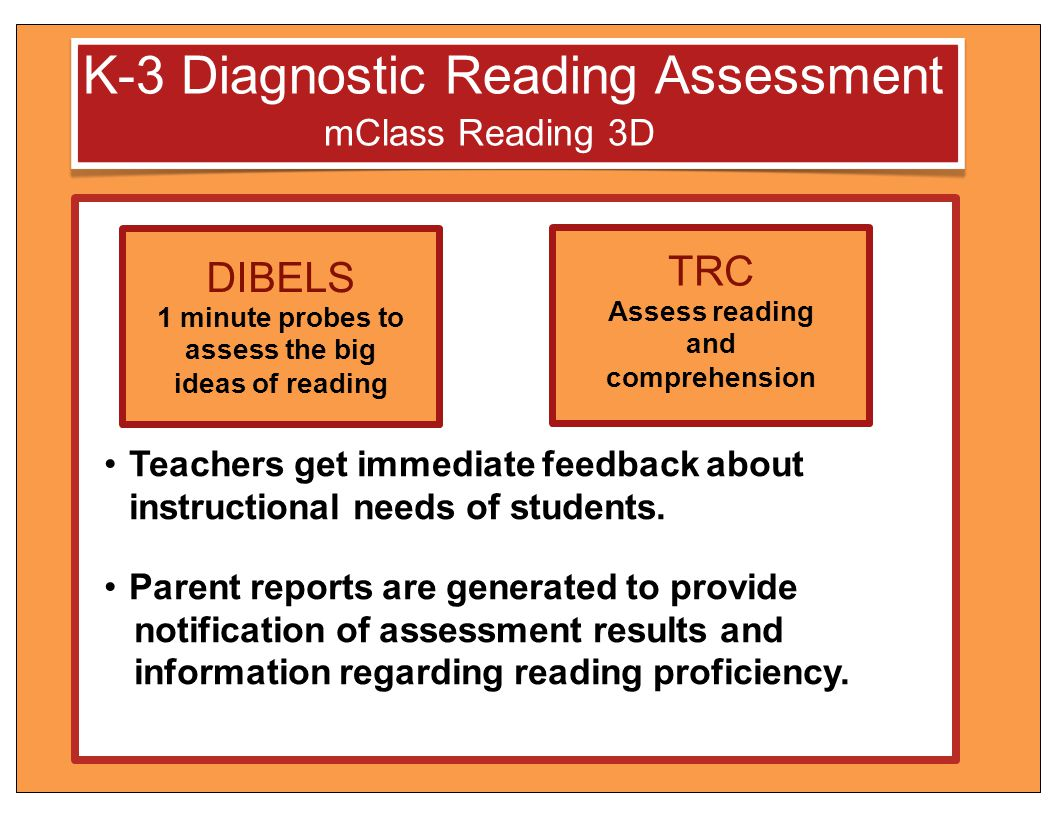 assess the big ideas of reading