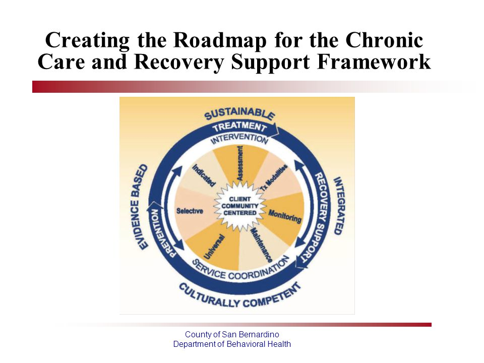 Creating the Roadmap for the Chronic Care and Recovery Support Framework