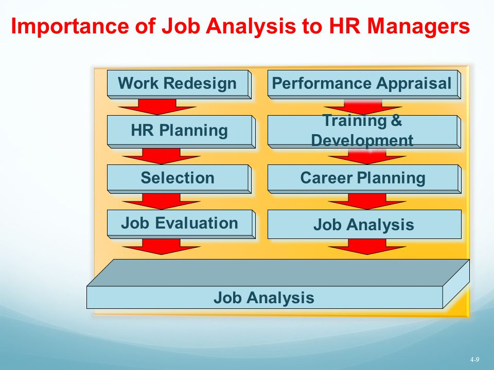 Importance of Job Analysis to HR Managers